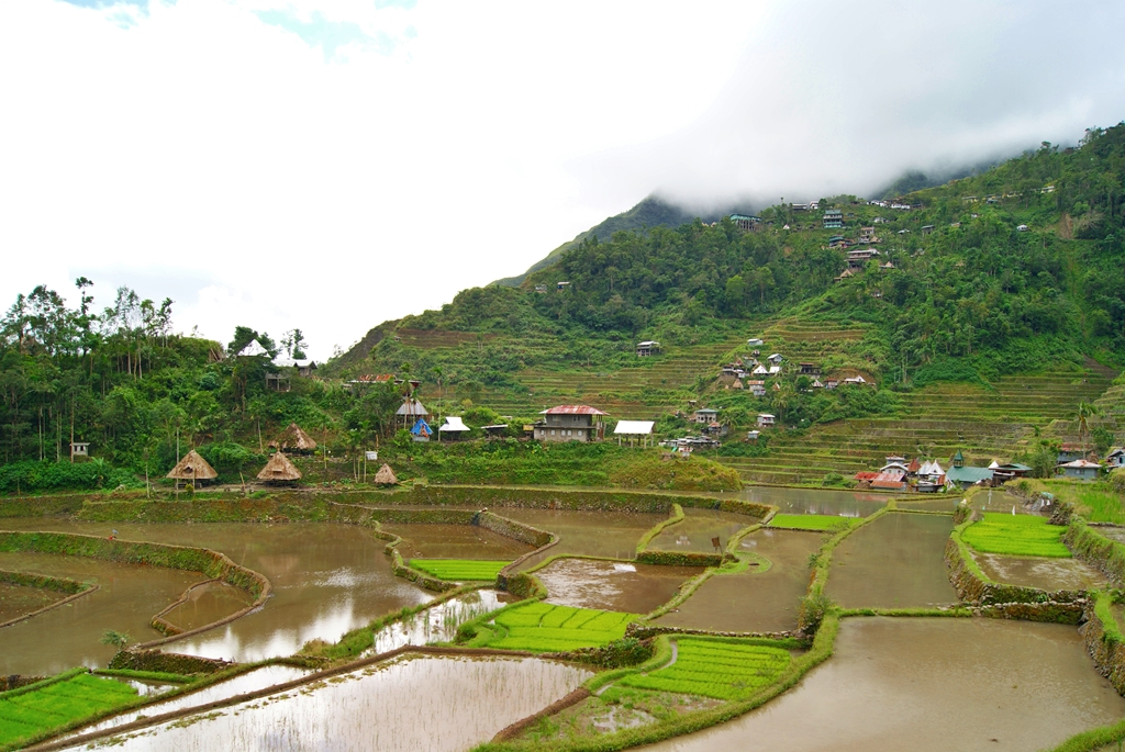 Terrazas de arroz de Banaue