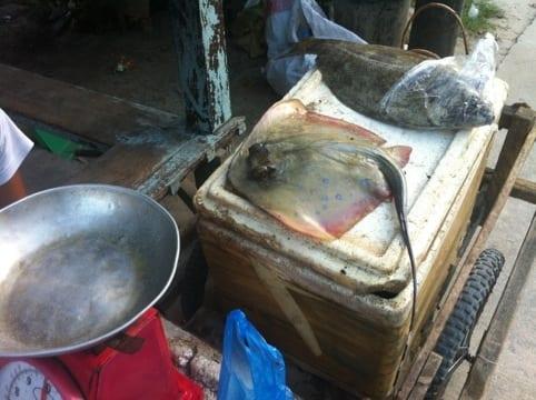 Mercado de El Nido, Filipinas