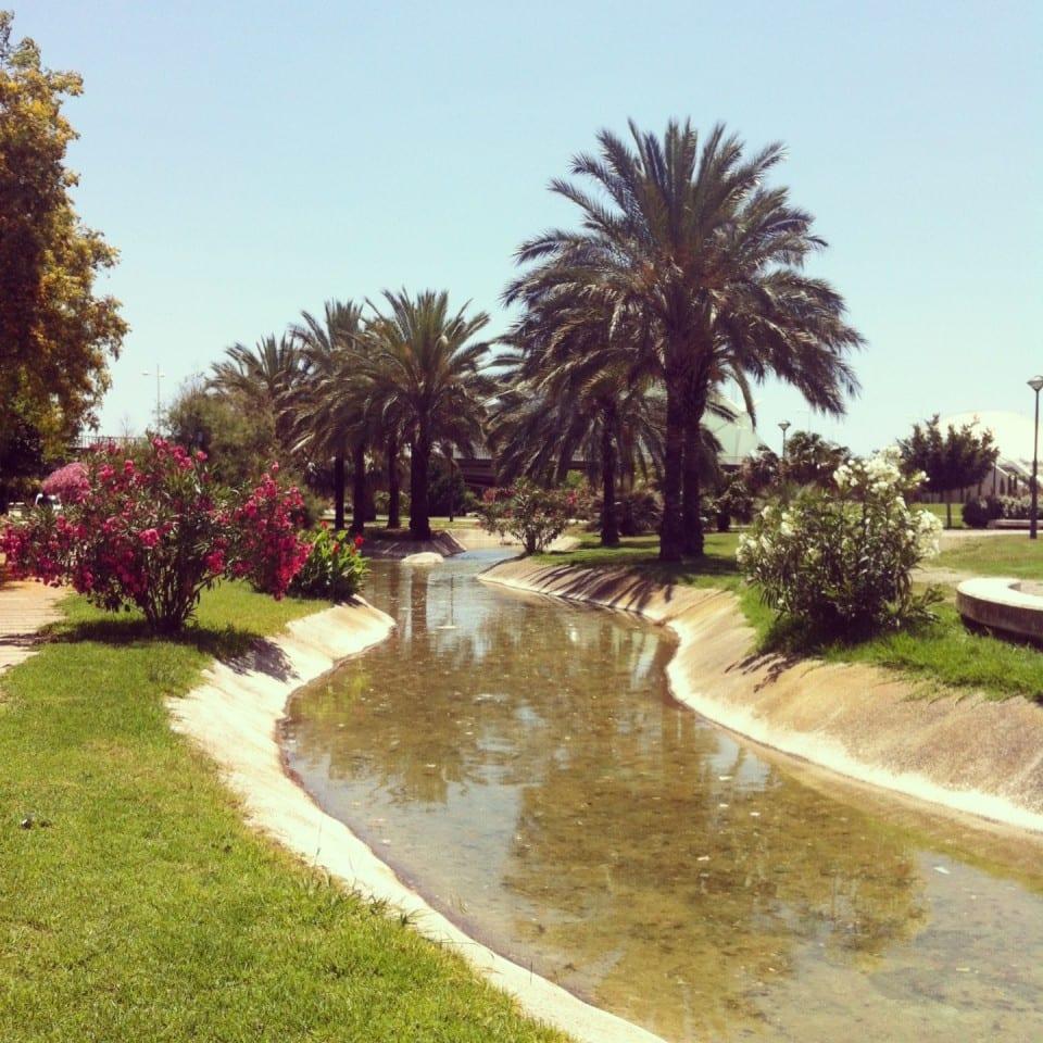Jardines del turia el gran parque de valencia meridiano 180 - Jardin del turia valencia ...