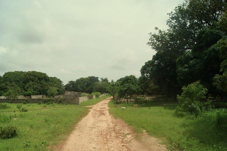 Camino a Ginak