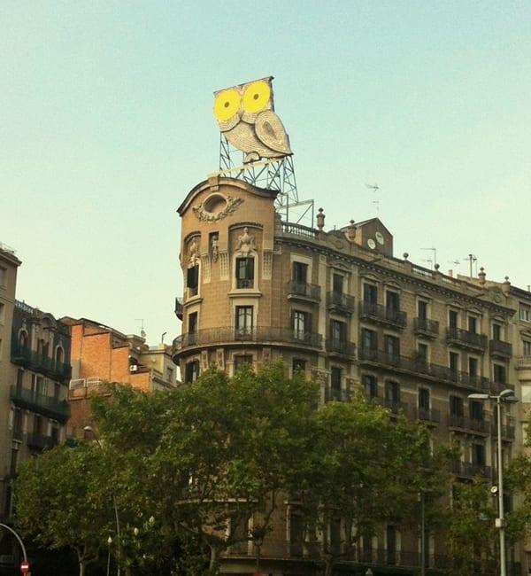 Búho, Barcelona