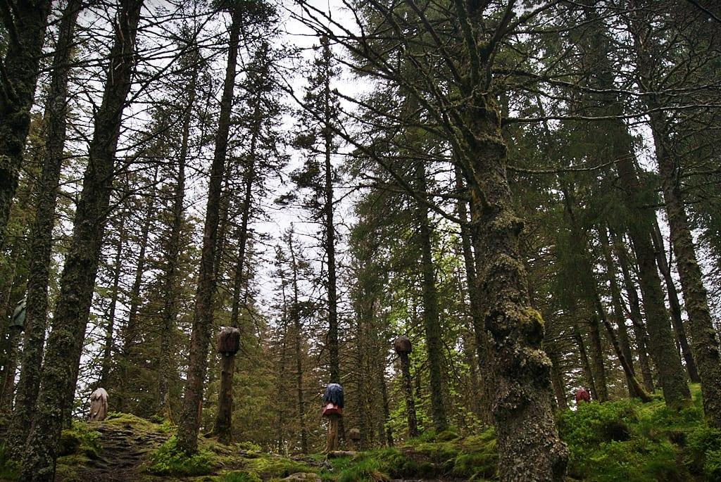 Bosque de los trolls, Floyen, Noruega