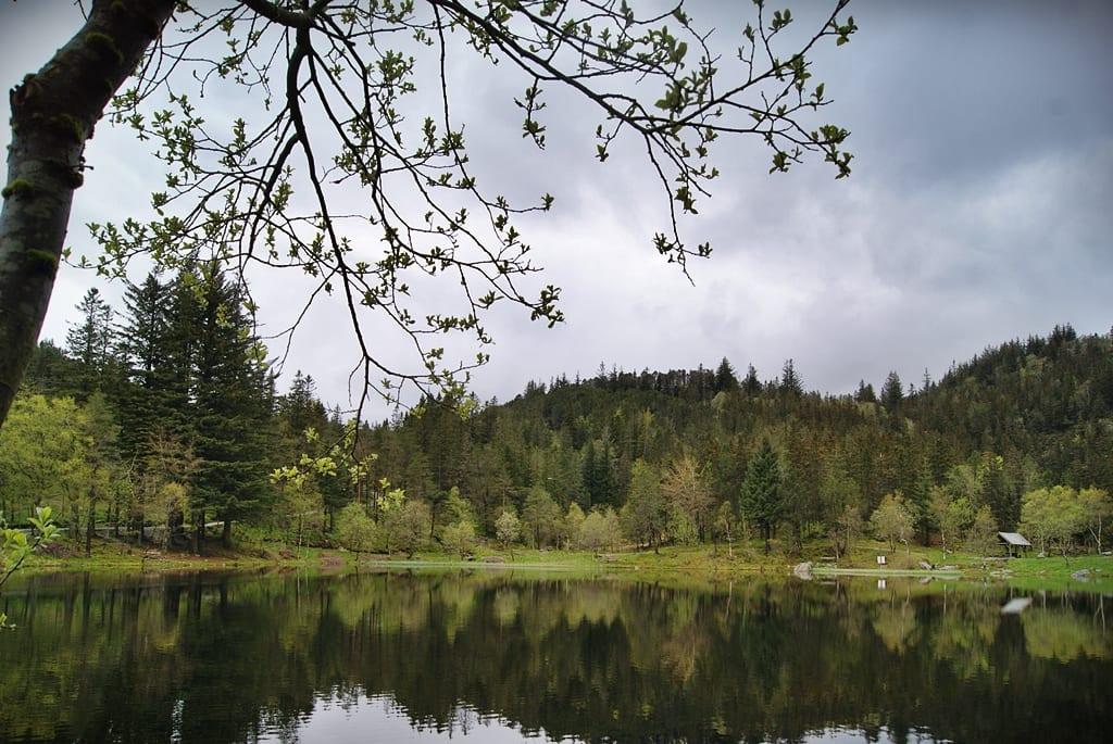 Floyen, Noruega
