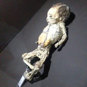 Museo Momias de Guanajuato, niños